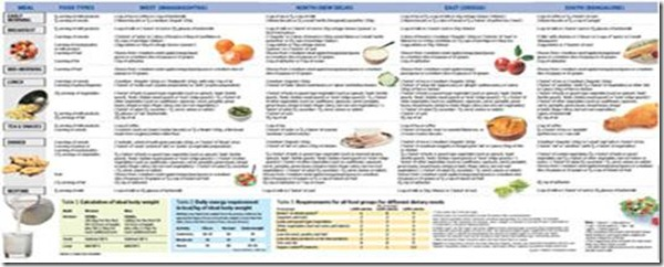 Diabetic Diet Chart For Type 1 Diabetes Type 2 Diabetes Juvenile